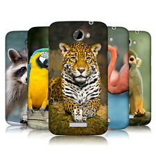 HEAD CASE DESIGNS FAMOUS ANIMALS HARD BACK CASE COVER FOR HTC ONE X