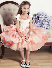 Kids Baby Girl's formal occasion Party TUTU Princess Dress BRIDESMAID 2-7 Years