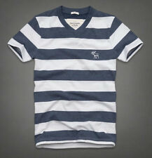 NWT Abercrombie & Fitch Mens Mountain Pond Tee