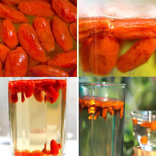 Premium Organic Natural Goji Berry - Dried Lycii Wolfberry Healthy New Arrival