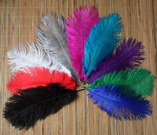 Wholesale Natural OSTRICH FEATHERS 10-12'inch 9 kinds Color Selection