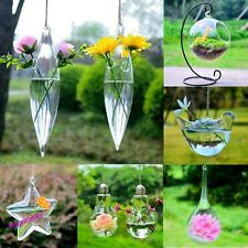 Hanging Glass Plants Flower Vase Hydroponic Container Home Wedding Decor New