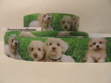 Grosgrain Ribbon, Cute White Puppy Doggies on Grass, Dog Rescue, Collars, 7/8""