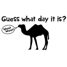 "Guess What Day It Is ""Hump Day"" T-shirt Sm - 2Xl"