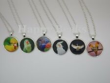 Bird Toy, Glass Parrot Picture Necklaces - Happy Beaks