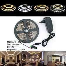 Xmas 3528 Waterproof 5M 10M 15M LED Flexible Strip Light & DC & 2A Power Adapter