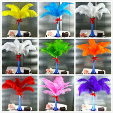 10-100pcs High Quality Natural OSTRICH FEATHERS 10-12'' Inch Weddings birthdays