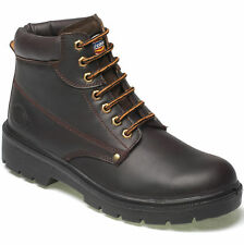 Mens Dickies Antrim Safety Boot with steel toe cap and midsole Brown size7-12 uk