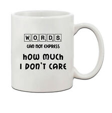 Words Can Not Express How Much I Don'T Care Ceramic Coffee Tea Mug Cup
