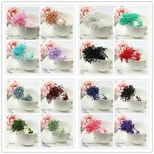 280 x Artificial Flower Stamen Double Tip Pearlized Craft Cards Cake Decoral d95