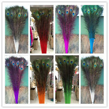 Wholesale 10-500 PCS peacock feathers eye 28-32 inches/70-80cm color selection