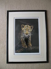 LEOPARD CUB EXQUISITE SIGNED LIMITED EDITION PRINT BY STEVEN TOWNSEND