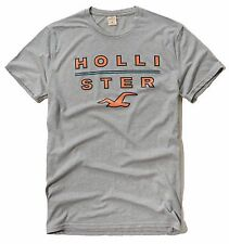 New Hollister By Abercrombie & Fitch Men's Graphic Logo T Shirt Size S M Gray