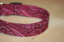 Raspberry Paisley Adjustable Dog & Cat Collars & Martingales & Leashes pink