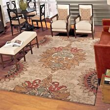 RUGS AREA RUGS CARPET 8x10 AREA RUG LARGE LIVING ROOM RUGS ORIAN RUGS DIRECT NEW