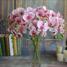 Silk Flower Simulation Restaurant Plant Butterfly Orchid Artificial Home Decor O