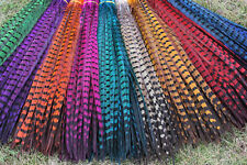 Wholesale beautiful natural pheasant tail feathers 14-22 inches/35-55 cm
