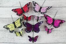 12 Large Small Real Feather Butterflies Butterfly 5 10 cm Wedding Bright Colour