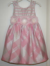 NWT Adorable Bonnie Jean Pink & Silver Dress with Flower Accents - Sizes 2T & 4T