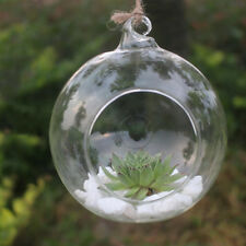Glass Ball Globe Shere Hanging Tealight Candle Holder Wedding 6/8/10/12cm Round