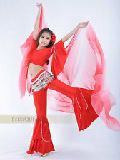 Belly Dance Flare Costume 2 pcs Top & Pants 9 colours