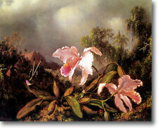HUGE Heade Jungle Orchids & Hummingbirds Stretched Canvas Giclee Repro ALL SIZES