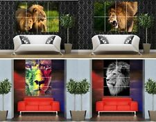 Young strong Desert Jungle LION large giant poster print Home Décor photo art