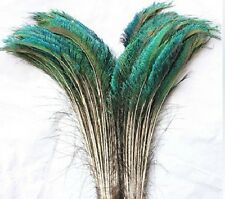 Wholesale!10 PCS-100pcs beauful natural peacock sword feathers about 12-14 inch