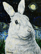 Bunny at night signed art print rabbit animals gift new artwork