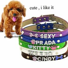 + Croc Dog Cat Pet Collar w bling Rhinestone Letters CHARM Paw Skull Heart Crown