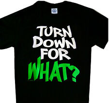 TURN DOWN FOR WHAT DRAKE JAYZ HIP HOP  Tee t-shirt Funny
