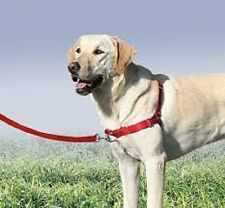 Beaupets Easy Walk (E Walk) Harness Gentle Leader for Dog - Large and Medium