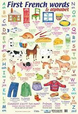 New First French Words Learn The Alphabet in French Mini Poster