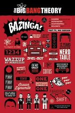 New The Big Bang Theory Infographic Phrases, Quotes And Jokes Poster