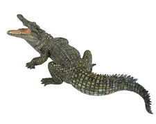 FREE SHIPPING | Papo 50055 Nile Crocodile Model Animal Figurine - New in Package