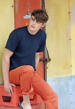 Mens Fruit of the Loom Heavy Cotton Tee Shirt T top