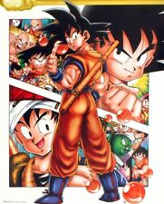 Dragon Ball Z Character Collage DBZ Mini Poster 40x50cm