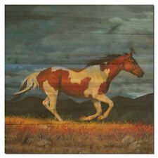 WGI-GALLERY Storm Front by Chris Cummings Painting Print Plaque