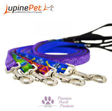 Lupine Dog Lead 12mm x 1.8m (6ft) Cat, puppy, small dog leash - Asst patterns