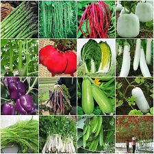 Heirloom Garden vegetable seeds Non-GMO organic Asparagus Purple Carrots Leek
