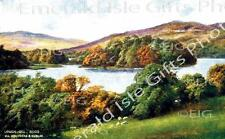 Sligo Sheep by Lough Gill Old Irish Photo Print - Size Selectable - Ireland