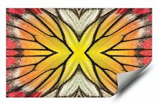 Painted Jezebel Butterfly Mirrored Wing HD Vinyl Wall Art Poster Decal Sticker