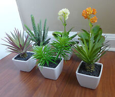 2 New Mini Potted Plants With Sand Unkillable Desert Grass Office Decor Plants