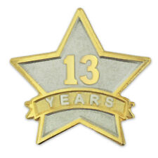 PinMart's 13 Year Service Award Star Corporate Recognition Dual Plated Lapel Pin