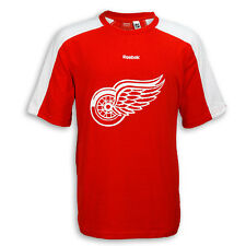 Detroit Red Wings Team Jersey T-Shirt (Customization Available)