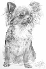 CHIHUAHUA DESIGN by Animal Artist Mike Sibley - T-Shirt Youth M to 4Xlg