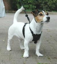 Sporn Non Pull Padded Dog Harness Small, Medium & Large Available