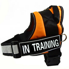 REFLECTIVE Service Dog Harness IN TRAINING Velcro Patches Rugged Padded Vest NEW