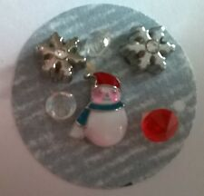Monthly Holiday floating charms groupings for living memory lockets US seller