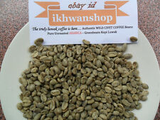 Pure Authentic Unroasted ARABICA Wild Civet Green Coffee Beans - 1600 grams